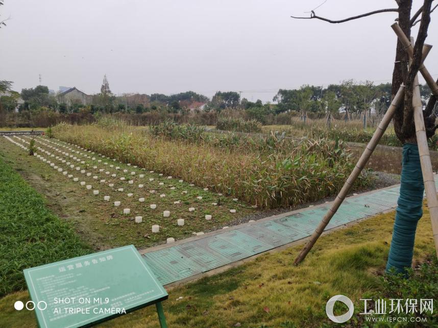 固相碳源深度脱氮技术应用案例-宁波江北海绵城市